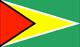 Guyana Consulate in Houston